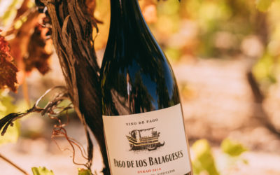Pago de los Balagueses 96 points, among James Suckling's favorites once again