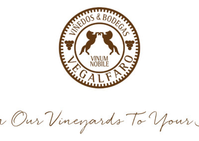 Logo Vegalfaro soul